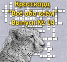 Кроссворд «Всё обо всём» Выпуск № 14
