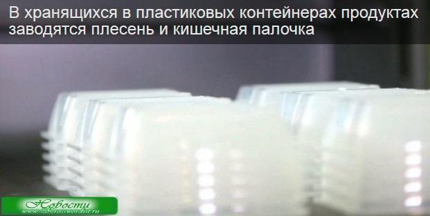В пластиковых контейнерах заводятся плесень и кишечная палочка