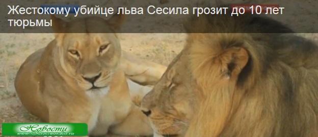 Убийце льва Сесила грозит 10 лет тюрьмы